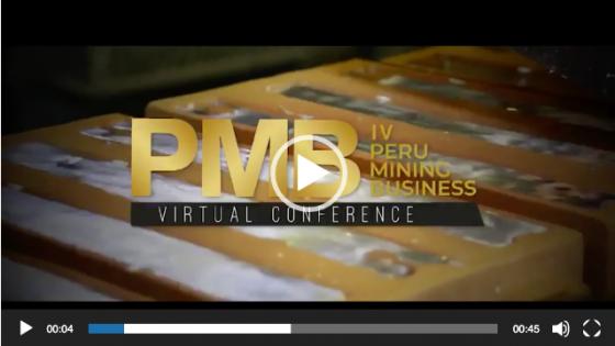 PMB Minning Business